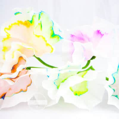 Flower Chromatography is a beautiful spring science experiment