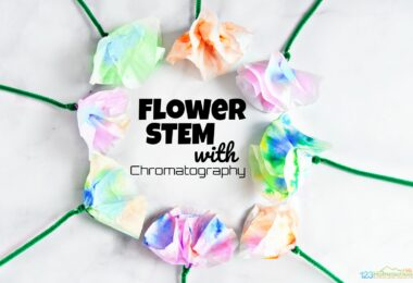 learn what is chromatography with this fun, hands on science project for kids from toddlers, preschoolers, pre k, kindergartners, first grader, and 2nd graders too