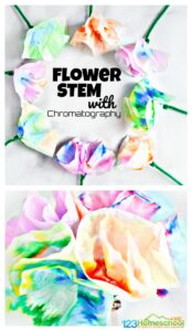 Fun and EASY chromatography projects for kids