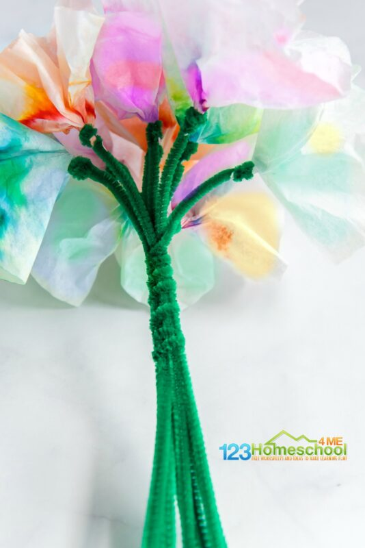 make a whole bouquet of amazing chromatography stem project using Paper Chromatography