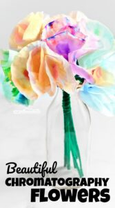 Learn how to make these beautifulchromatography flowers using coffee filters and markers. This is both a fun art project AND a simple science experiments for kids that explores colors while making pretty craft flowers for spring and summer. This STEAMproject is the perfect spring activity for toddler, preschoolers, pre k, kindergarteners, first grade, 2nd grade, and 3rd graders.