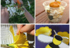 Creative Ways to Learn with Flower