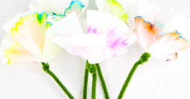 Spring Flowers Chromatography Science Project
