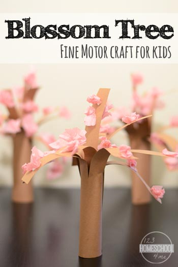 Spring is in the air! One of our favorite signs of Spring is a blooming Cherry Blossom Tree. So we decided to make a pretty cherry blossom craft to celebrate one of our springtime favorites!  This spring craft is great because it includes a lot of fine motor work for toddler, preschool, pre-k, kindergarten, and first grade students. So come see how to make a cherry blossom tree with tissue paper with your child!