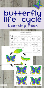 butterfly life cycle worksheets