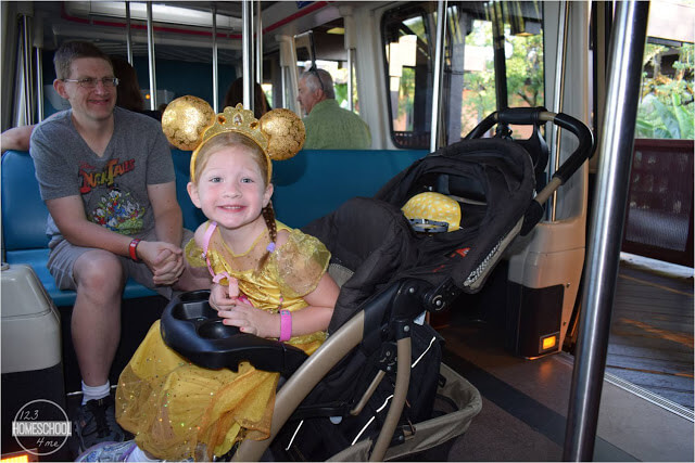 bringing a stroller to Disney World