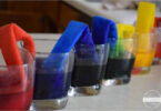 Capillary-Action-Science-Experiment