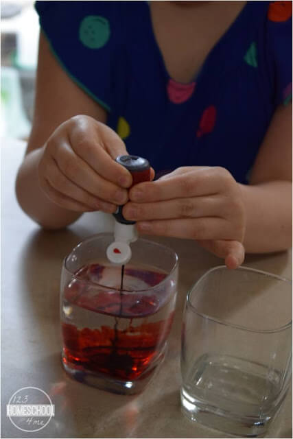 simple science project for kids