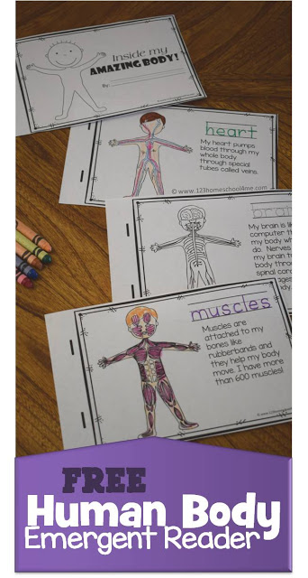 FREE Human Body Emergent Reader for preschool, prek, kindergarten, first grade, 2nd grade, 3rd grade