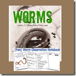 1st grade worm observatino notebook
