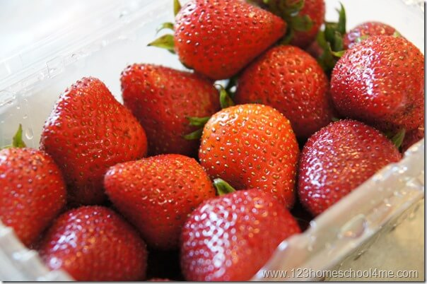 strawberry dessert recipe