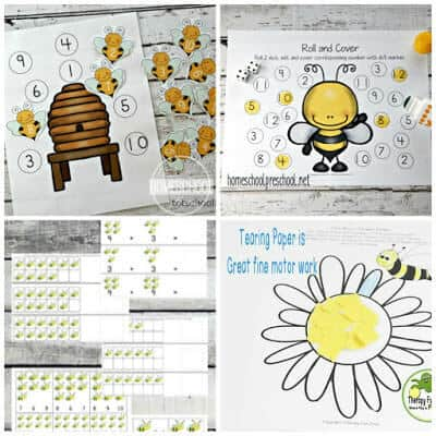 Bee Worksheets for First Grade