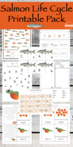 Salmon-Life-Cycle-Printable-Pack