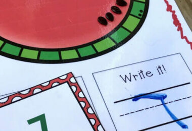 Watermelon-Seeds-Counting-Set