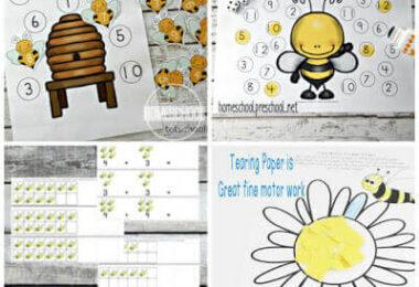 Honeybee activities for National Honey Month