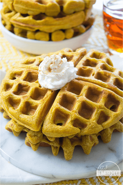 Pumpkin Waffles Recipe