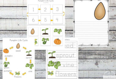 Pumpkin-Life-Cycle-Worksheets