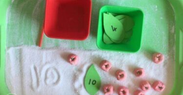 Apple Counting and Writing Tray