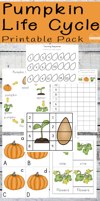 Fall is a fun time of the year as it creates lots of fun learning opportunities for parents, teachers, and homeschoolers. This super cute and free printable Pumpkin Life Cycle Worksheets contain over 89 pages of themed worksheets for preschool, pre-k, kindergarten, and first graders to practice literacy and math activities while learning about the life cycle of a pumpkin. Simply print the pumpkin life cycle worksheet pdf for fun science activities for October!