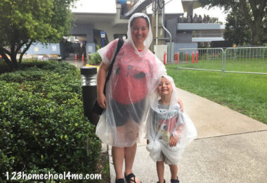 Tips for Doing Disney World in the Rain