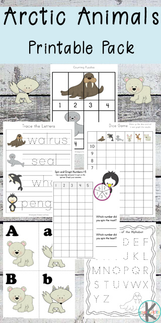 FREE Arctic Animals Worksheets for preschool, kindergarten, and first grade to learn about arctic animals while practicing their alphabet letters, counting, graphing, which comes next and so much more.