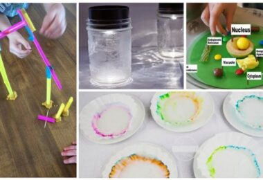 35 Science Fair Projects for Kids