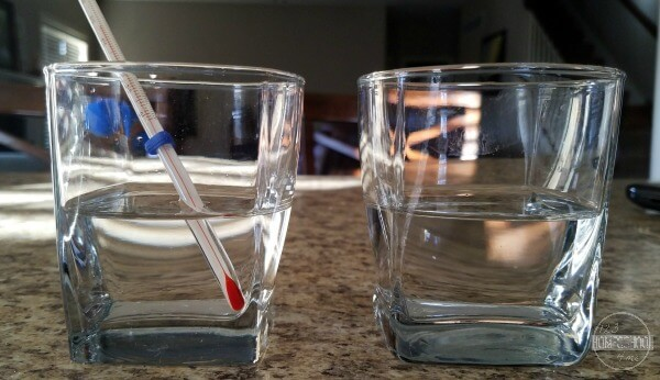 gather two glasses, water, ice cubes, salt and a thermometer for this simple science experiment for kids