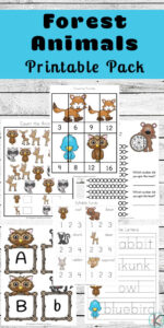 Forest Animals themed worksheets