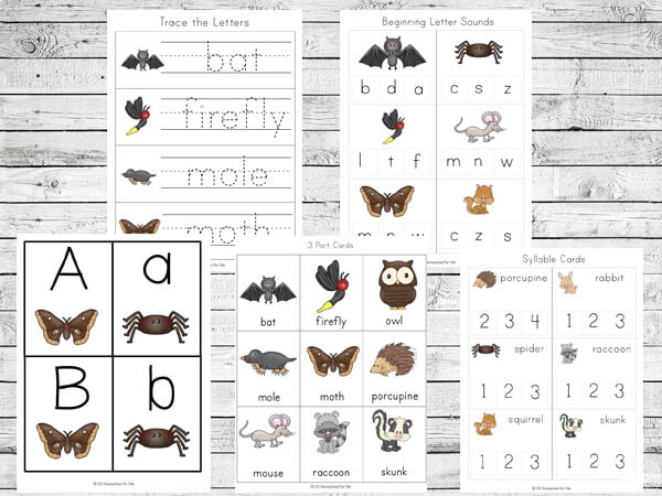 Nocturnal Animals Printable Pack | 123 Homeschool 4 Me