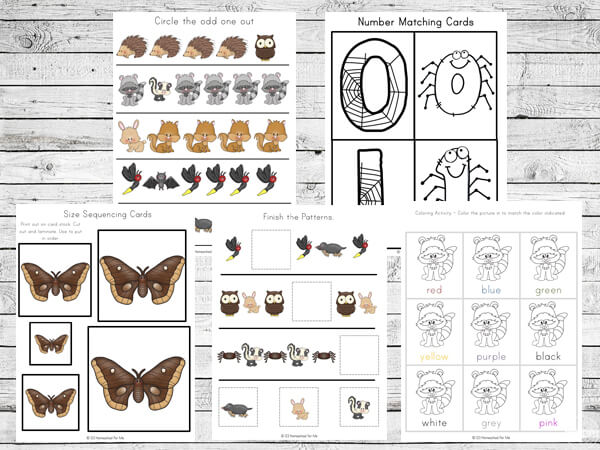 Image of: Shadow Matching Odd One Out Circle The Object That Is Different 123 Homeschool Me Nocturnal Animals Printable Pack 123 Homeschool Me