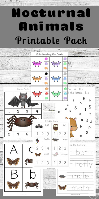 FREE Printable Nocturnal Animals for Kids Worksheets to help preschool, kindergarten, first grade practice counting, alphabet letters, writing words, counting syllables, addition, color words, sorting by size, and so much more!
