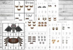 Nocturnal Animals Printable Pack