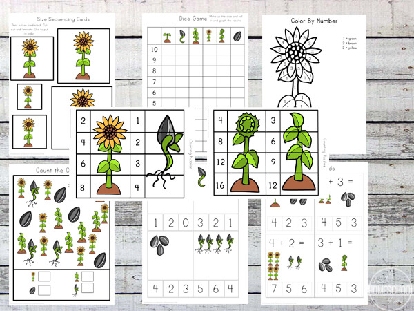 sunflower-kindergarten-worksheets