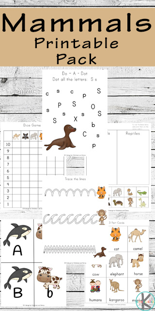 FREE Mammals Worksheets - free printable worksheets to help toddler, preschool, prek, kindergarten, and first grade kids learn about mammals while practice pre writting, alphabet letters, counting, math practice, and more