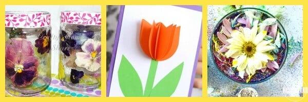 Flower Social Studies and Fun!