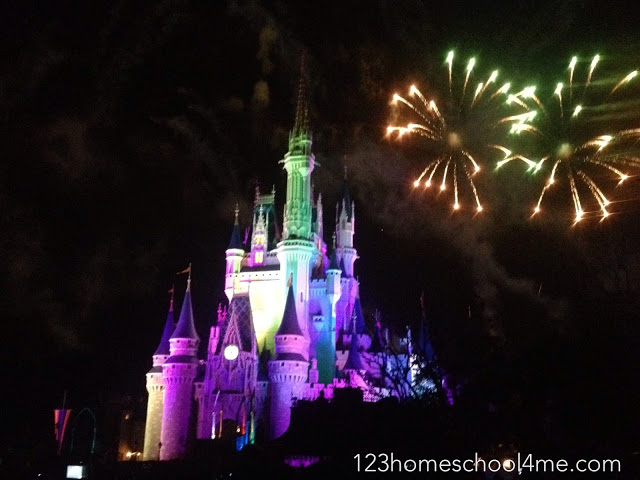 tips for magic kingdom fireworks