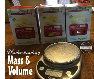 Mass and Volume Science Experiment for kids