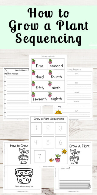 new grow a plant sequencing worksheets 123 homeschool 4 me. Black Bedroom Furniture Sets. Home Design Ideas