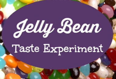 Jelly Beans-Senses-Science-Experiments