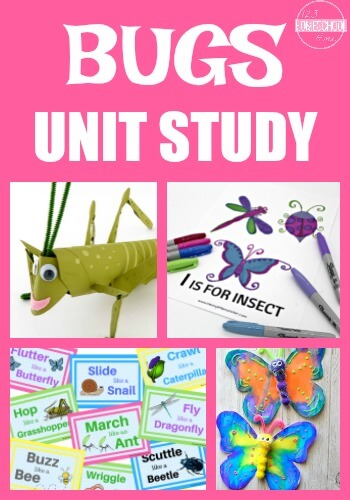 Bugs Unit Study - So many fun, clever, and educational learning activities for preschool, kindergarten, first grade, 2nd grade, 3rd grade, 4th grdae, and 5th grade kids to learn about bugs and insects this spring or summer. Perfect for hands on learning, summer learning, and school unit studies.