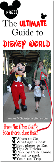 Disney World for Families #disneyworld