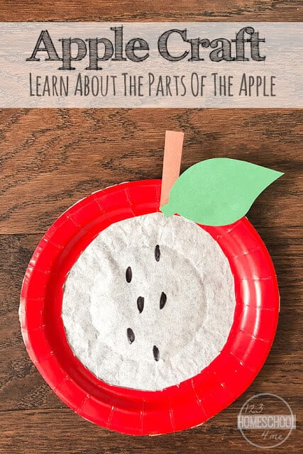 Apple Craft - super cute crafts for kids perfect for September! For this kids activity you ill need paper Plate and Coffee Filter to make this fun, simple craft for kids i- toddler, preschool, and kindergarten age kids. #apples #september #craftsforkids #preschool