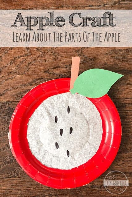 Today we are sharing a cute paper plate apple craft that is perfect for celebrating apple month in September. This super cute coffee filter apple craft uses simple craft supplies and a few easy steps to make a fun fall craft for the new school year. Toddlers, preschoolers, kindergartners, first graders, and 2nd graders can also learn about the parts of an apple as they put each part together!