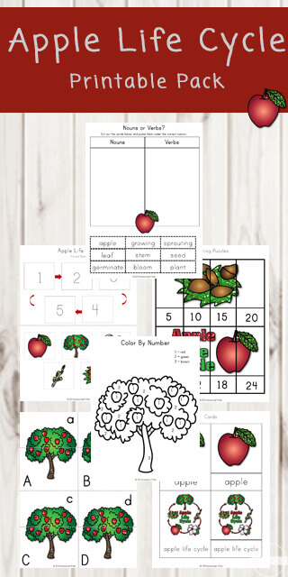 graphic regarding Free Printable Apple Worksheets titled Totally free Apple Daily life Cycle Printable Pack 123 Homeschool 4 Me
