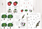 FREE Apple Life Cycle Printable Pack