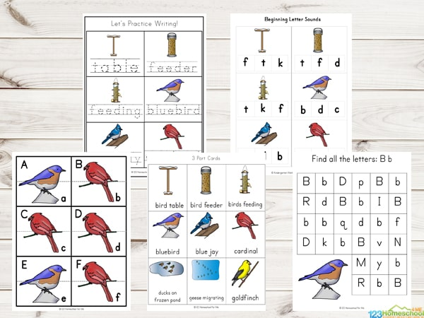 bird-worksheets-for-kids