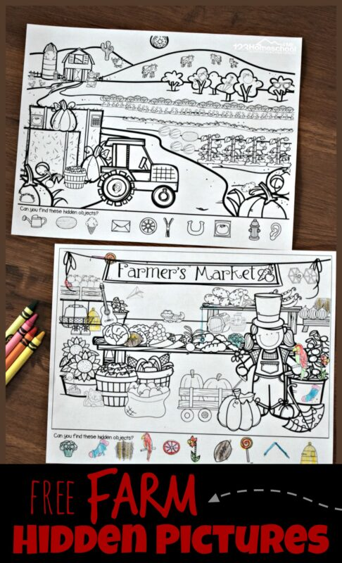 Help children work on their power of observation with these super cute, free printable Farm hidden pictures printable pack. whether you have a toddler, preschool, pre k, kindergarten, grade 1, or grade 2 students - these free worksheets are a great way to practice visual discrimination with a I spy game!