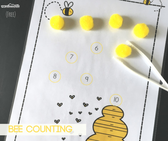 hands-on-counting-activity