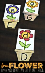 flower upper and lowercase letter matching