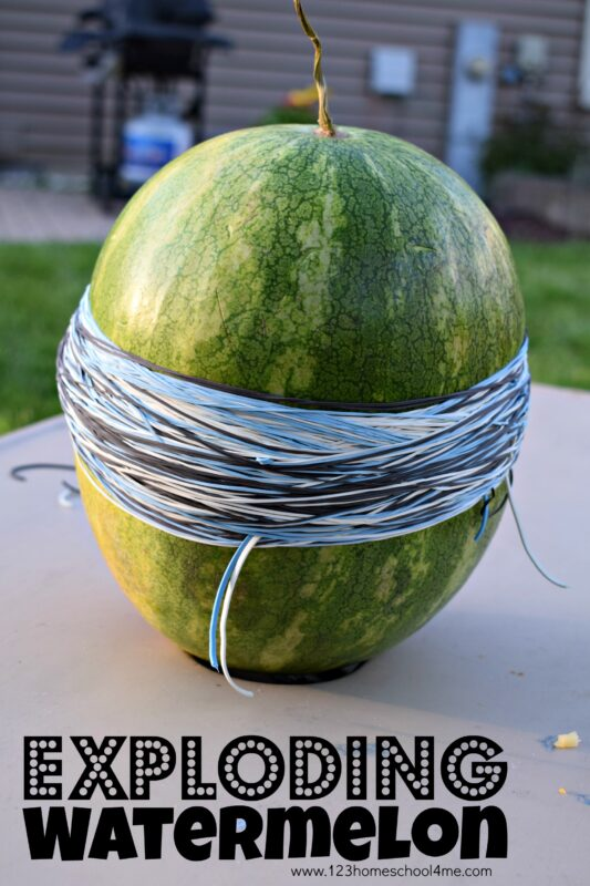 This amazing watermelon challenge is a must for your summer bucket list